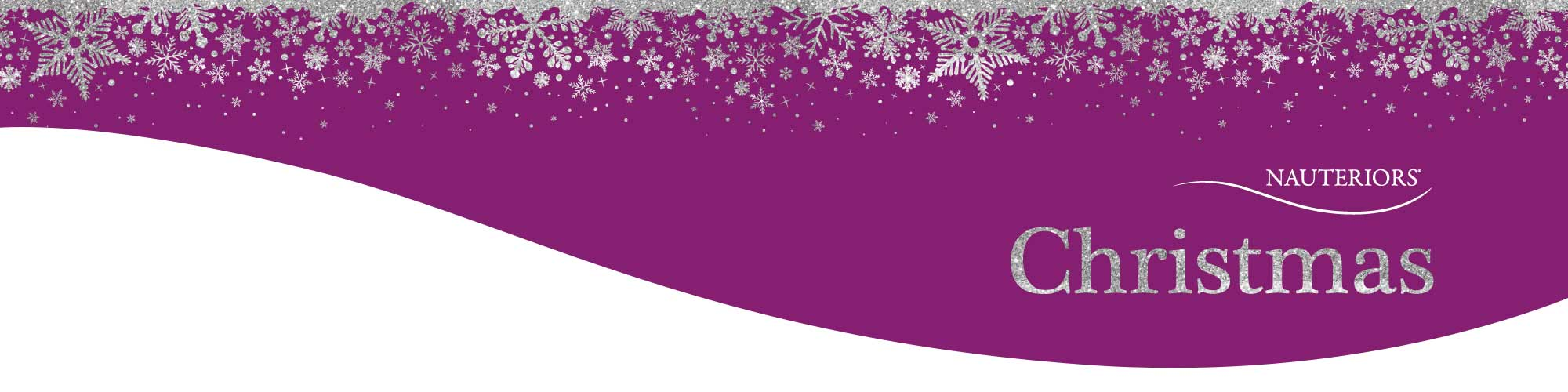 xmas page banner